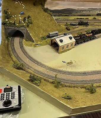 £40 • Buy Hornby Model Railway Track And Scenery On Table With Legs