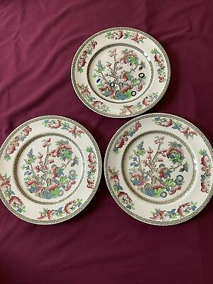£9.50 • Buy Johnson Brothers (Bros) Indian Tree Pattern Dinner Plate - 26 Cm X 3