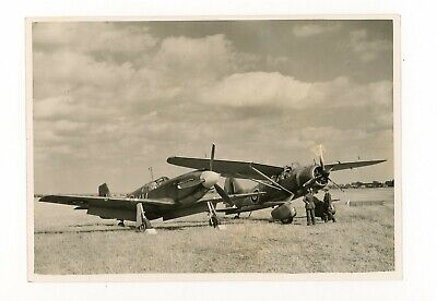 £1.99 • Buy Photograph Of Westland Lysander And North American Mustang Of 613 Sqn C.1942