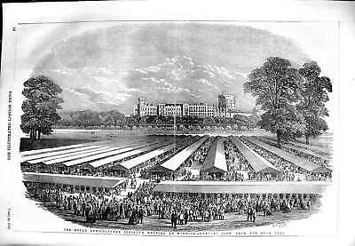 £21 • Buy Original Old Antique Print 1851 Royal Agriculture Society Meeting Windsor Park
