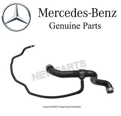 For Mercedes C215 CL-Class W220 S-Class Set of Lower Radiator /& Heater Hoses OES