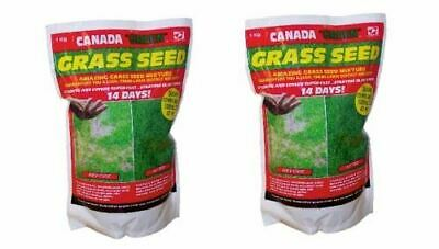 £39.99 • Buy 2kg Of Genuine Original Canada Green Grass Seed Fast Growing 500sq Ft Free P&p