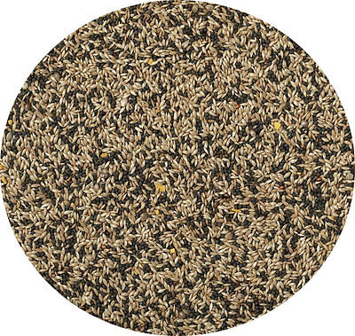 Canary Seed Mixed 500g Bow Brand Great Seed Mixed Seed Food Feed For Canaries • 2.99£