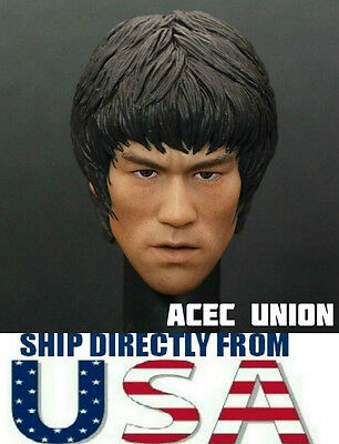 $35.50 • Buy 1/6 Scale Bruce Lee Head Sculpt For Hot Toys Enterbay Male Body U.S.A. SELLER