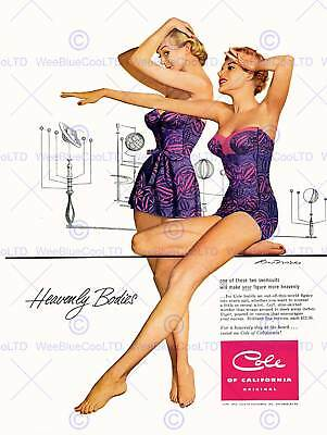 Advertising Sport Clothing Swimming Swimsuit Orrery Usa Art Poster Print Cc6241 • 9£