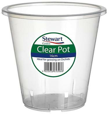 ORCHID POT Clear Pot 16cm Ideal For Growing On Orchids See Through Pot Tub Etc • 4.99£