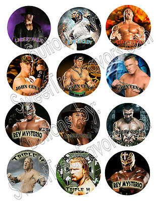 WRESTLING WWE Party Supplies 12 PINS Buttons FAVORS Decoration Birthday Treats * • 9.37£