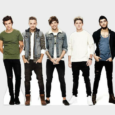 Official One Direction Collection Table Standee Case Bag Duvet Towel Fleece Gift • 3.48£