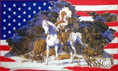 $8.69 • Buy Indian On Horse In Snow US Flag 3x5 Ft USA America Native American Headdress US