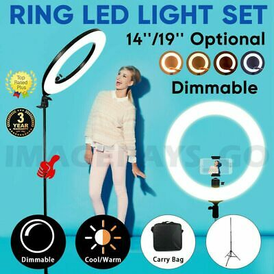 AU24.89 • Buy 19  14   5500K Dimmable Diva LED Ring Light With Diffuser Stand Make Up Studio