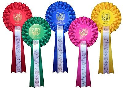 £5.25 • Buy *1st - 5th Place 2 Tier Rosettes Horse Show Gymkhana Pony Party Dog Show