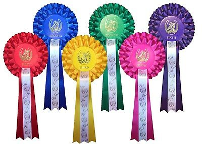 £6.99 • Buy *1st - 6th Place 2 Tier Rosettes Horse Show Gymkhana Pony Party Dog Show