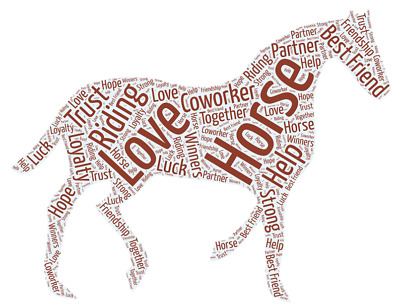 £5.99 • Buy Personalised WordArt Equestrian Dressage Horse Pony Picture Print Gift Christmas