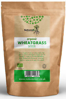 £10.99 • Buy Certified Organic Wheatgrass Seeds - Juicing | Sprouting | Cat Grass | Grinding