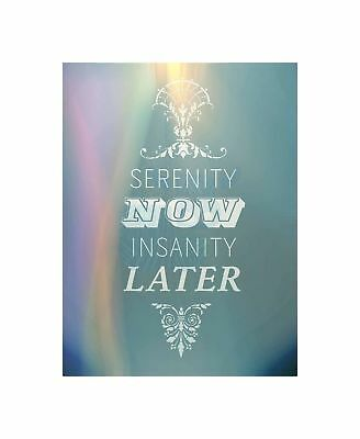 Serenity Now Insanity Later Typography Quote Motivation Blue Art Canvas Print • 16.50£
