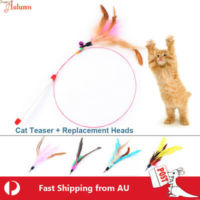 AU6.49 • Buy Cat Toy Feather Teaser Wand Interactive Stick Kitten Pet Fun Wire Beads