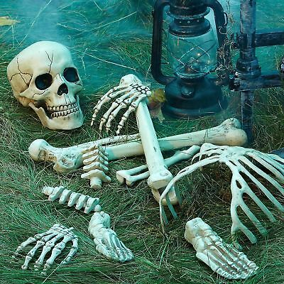 $20.95 • Buy Life-Size Bag Of Bones Human Skeleton Body Parts Halloween Prop Haunted House