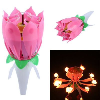 $ CDN4.67 • Buy Magic Lotus Musical Candle Flower Auto Blossom For Birthday Party Cake Topper