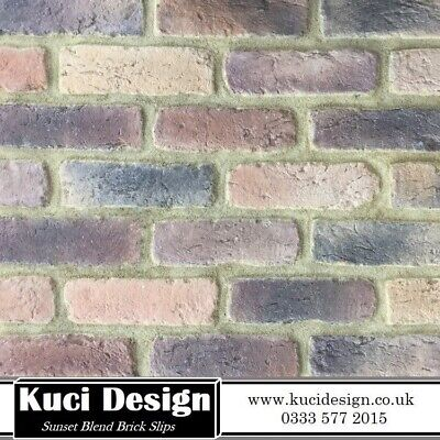Multis Brick Slips, Wall Cladding, Feature Wall, Brick Tiles SAMPLE • 1.50£