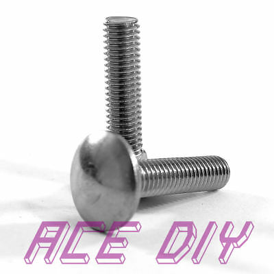 Carriage Bolts Square Cup Dome Coach Screw A2 Stainless Steel M5 M6 M8 M10 M12 • 0.99£