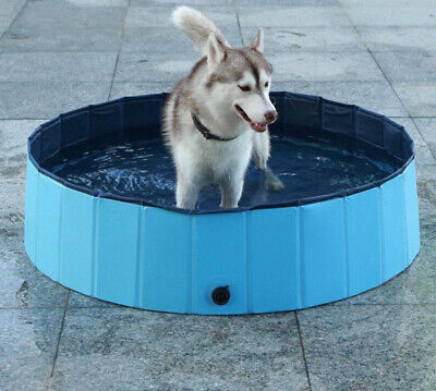 Dog Paddling Pool   Compare Prices on dealsan.com