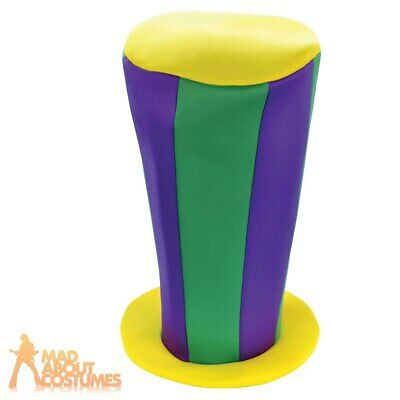Adults Mad Hatter High Top Hat Alice Fairy Tale Tea Party Fancy Dress Accessory • 6.99£