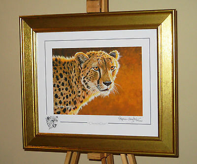 STEPHEN GAYFORD Original Limited Edition Print Of A Cheetah 'Cheetah Glow' + COA • 35£