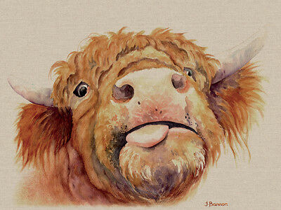 £19.99 • Buy Jane Bannon - Baxter - Canvas Print Wall Art 3 Sizes Available - Highland Cow