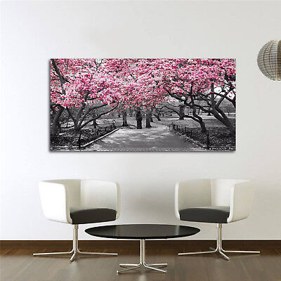 Black & White Wall Art Pink Blossoms Canvas Wall Art Picture Print UK • 4.09£