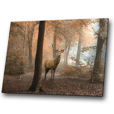 Animal Canvas Print Framed Kitchen Wall Art Picture Stag Deer Forest Orange • 34.99£