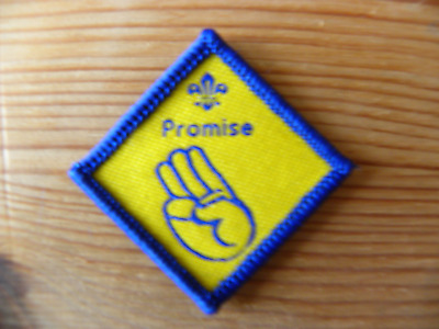 £1 • Buy Discontinued UK Scouting Beaver Scout Challenge Award Promise