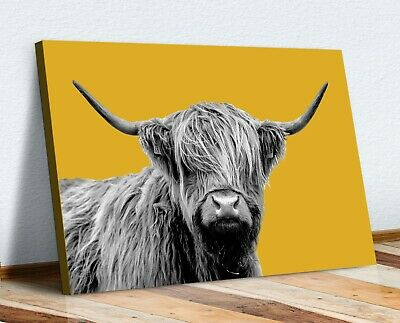 £16.99 • Buy Highland Cow Black And White Yellow Mustard Canvas Wall Art Print Artwork