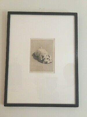 £750 • Buy Cecil Aldin Original Dry Point Etching  A Sealyham Puppy, Signed In Pencil