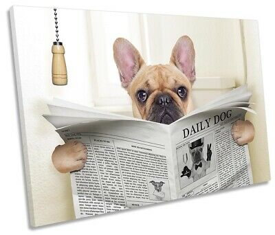 French Bulldog Newspaper Toilet Picture SINGLE CANVAS WALL ART Print • 23.99£