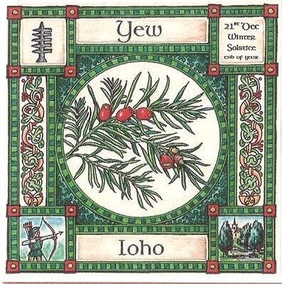 WINTER SOLSTICE YEW TREE CARD 21st Dec CELTIC PAGAN Ogham OGHAM WICCAN • 2.50£