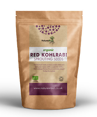 £4.75 • Buy Organic Red Kohlrabi Sprouting Seeds - Microgreen Sprouts | Healthy Vegetable