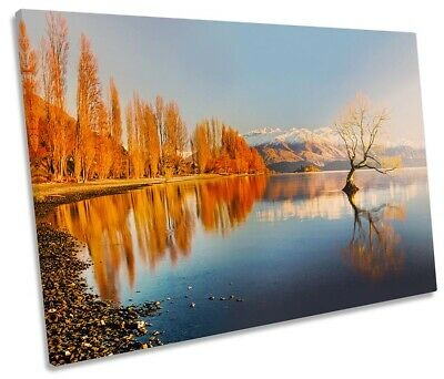 Lake Wanaka Tree New Zealand Print SINGLE CANVAS WALL ART Picture Orange • 23.99£
