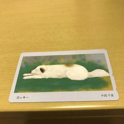$ CDN38.44 • Buy Telephone Card Chinami  Nakajima Rocky Unused New Art Design Rare Calling Japan