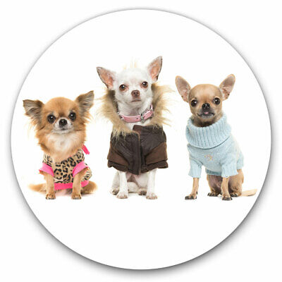 2 X Vinyl Stickers 10cm - Chihuahua Dog Puppy Group Cool Gift #8131-2 • 2.49£