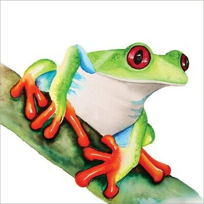£2.75 • Buy Cute Blank Greeting Card By Artist Maria Moss Cards - Colourful Tree Frog