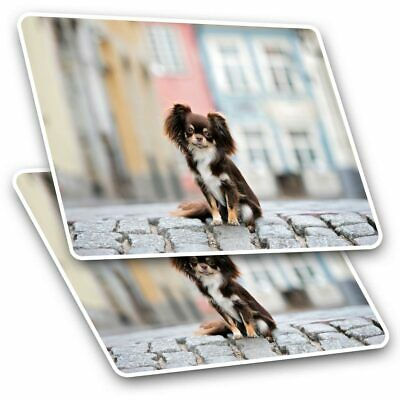 2 X Rectangle Stickers 10 Cm - Brown Chihuahua Dog Puppy #15551 • 2.49£