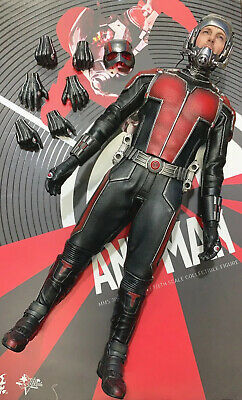 $ CDN237.90 • Buy HOT TOYS MMS308 MARVEL ANT-MAN SCOTT LANG 1/6th Scale Figures Only