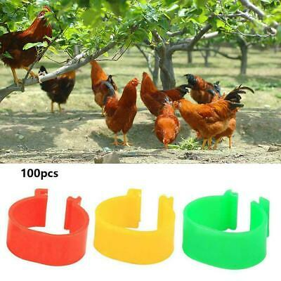 100X 16mm Colour Clip On Leg Band Rings For Chickens, Poultry Ducks, Hens, O0X4 • 3.92£