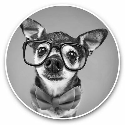 £3.49 • Buy 2 X Vinyl Stickers 15cm (bw) - Hipster Chihuahua Puppy Bowtie  #37333