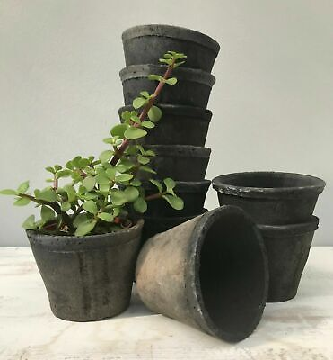 £13 • Buy Aged Grey Terracotta Mini Small Stone Plant Pots Rustic Moss Pot Covers Planters