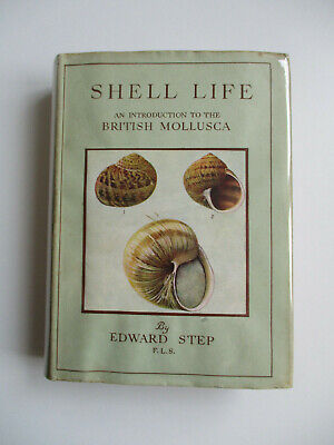 1945 SHELL LIFE - BRITISH MOLLUSCA Edward Step WAYSIDE AND WOODLAND SERIES - VGC • 40£