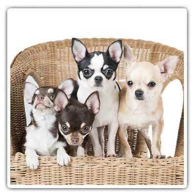 £3.99 • Buy 2 X Square Stickers 7.5 Cm - Chihuahua Puppies Dogs Puppy Dog  #44581
