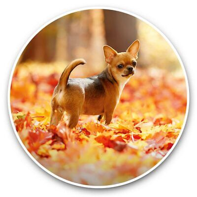 2 X Vinyl Stickers 7.5cm - Chihuahua Brown Dog Puppy Forest  #44580 • 1.99£