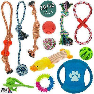 Pack Of 10/12pcs Dog Puppy Toy Rope Soft Plush Sound Play Squeaker Ball Toys A71 • 13.69£