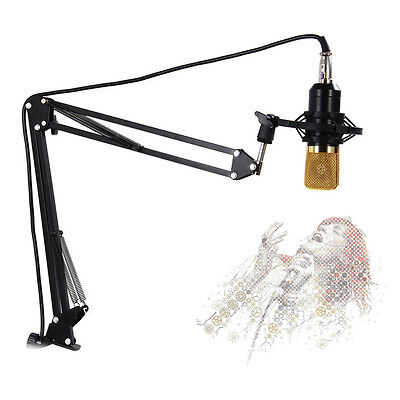 NB-35 Adjustable Studio Microphone Boom Scissor Arm Desktop Stand Holder JfWI • 13.85£
